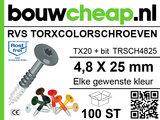 RVS TorxColorschroeven 25mm 100 st_