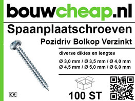 Spaanplaatschroef 100 st Pozidriv Bolkop Verzinkt